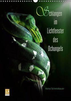 Schlangen im Lichtfenster des Dschungels (Wandkalender 2019 DIN A3 hoch) von Schmidbauer,  Heinz