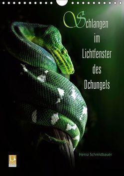 Schlangen im Lichtfenster des Dschungels (Wandkalender 2019 DIN A4 hoch) von Schmidbauer,  Heinz