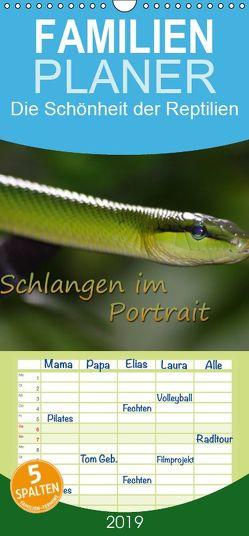 Schlangen im Portrait – Familienplaner hoch (Wandkalender 2019 , 21 cm x 45 cm, hoch) von Chawera