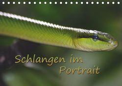 Schlangen im Portrait (Tischkalender 2019 DIN A5 quer) von Chawera