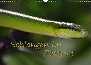Schlangen im Portrait (Wandkalender 2018 DIN A3 quer) von Chawera