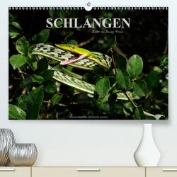 Schlangen (Premium, hochwertiger DIN A2 Wandkalender 2020, Kunstdruck in Hochglanz) von Trapp,  Benny