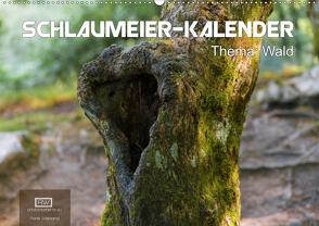 Schlaumeier-Kalender – Thema: Wald (Wandkalender 2020 DIN A2 quer) von Wersand,  René