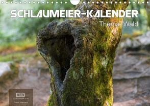 Schlaumeier-Kalender – Thema: Wald (Wandkalender 2020 DIN A4 quer) von Wersand,  René