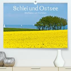 Schlei und Ostsee – Eine Region zum Verlieben (Premium, hochwertiger DIN A2 Wandkalender 2021, Kunstdruck in Hochglanz) von Hornecker,  Frank