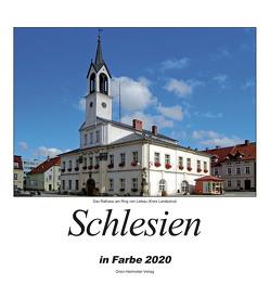 Schlesien 2020