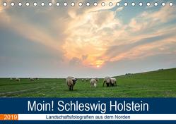 Schleswig Holstein – Landschaftsbilder (Tischkalender 2019 DIN A5 quer) von Jorzik-Brzelinski,  Yannick