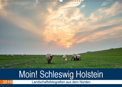 Schleswig Holstein – Landschaftsbilder (Wandkalender 2019 DIN A2 quer) von Jorzik-Brzelinski,  Yannick