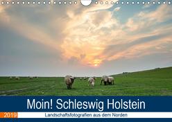 Schleswig Holstein – Landschaftsbilder (Wandkalender 2019 DIN A4 quer) von Jorzik-Brzelinski,  Yannick