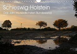 Schleswig-Holstein (Wandkalender 2019 DIN A4 quer) von Thomsen,  Ralf