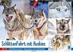 Schlittenfahrt mit Huskys (Wandkalender 2019 DIN A2 quer) von CALVENDO