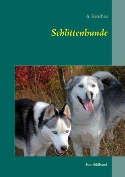 Schlittenhunde von Ketschau,  A.