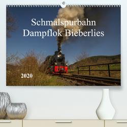 Schmalspurbahn Dampflok Bieberlies (Premium, hochwertiger DIN A2 Wandkalender 2020, Kunstdruck in Hochglanz) von Rein,  Simone