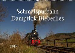 Schmalspurbahn Dampflok Bieberlies (Wandkalender 2019 DIN A2 quer) von Rein,  Simone
