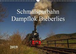Schmalspurbahn Dampflok Bieberlies (Wandkalender 2019 DIN A3 quer) von Rein,  Simone