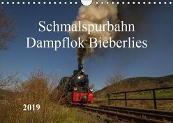 Schmalspurbahn Dampflok Bieberlies (Wandkalender 2019 DIN A4 quer) von Rein,  Simone