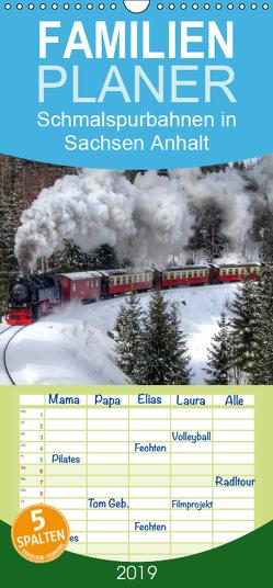 Schmalspurbahnen in Sachsen Anhalt – Familienplaner hoch (Wandkalender 2019 , 21 cm x 45 cm, hoch) von Gierok,  Steffen