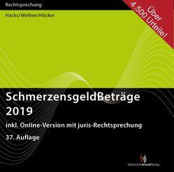 SchmerzensgeldBeträge 2019 (CD-ROM plus Online-Zugang) von Häcker,  Frank, Hacks,  Susanne, Wellner,  Wolfgang