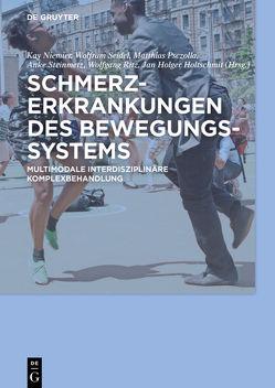 Schmerzerkrankungen des Bewegungssystems von Holtschmit,  Jan Holger, Niemier,  Kay, Psczolla,  Matthias, Ritz,  Wolfgang, Seidel,  Wolfram, Steinmetz,  Anke