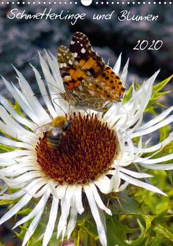 Schmetterlilnge und Blumen (Wandkalender 2020 DIN A3 hoch) von N.,  N.