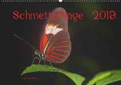 Schmetterlinge 2019CH-Version (Wandkalender 2019 DIN A2 quer) von J. Koller 4Pictures.ch,  Alois