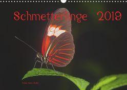 Schmetterlinge 2019CH-Version (Wandkalender 2019 DIN A3 quer) von J. Koller 4Pictures.ch,  Alois