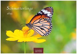 Schmetterlinge 2022 L 35x50cm