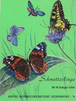 Schmetterlinge von Brandt,  H
