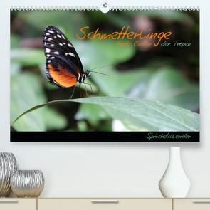 Schmetterlinge – bunte Exoten der Tropen (Premium, hochwertiger DIN A2 Wandkalender 2021, Kunstdruck in Hochglanz) von Thiem-Eberitsch,  Jana