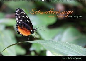 Schmetterlinge – bunte Exoten der Tropen (Wandkalender 2018 DIN A2 quer) von Thiem-Eberitsch,  Jana