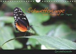 Schmetterlinge – bunte Exoten der Tropen (Wandkalender 2019 DIN A4 quer) von Thiem-Eberitsch,  Jana