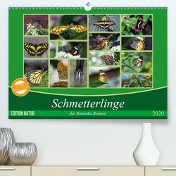 Schmetterlinge der Botanika Bremen (Premium, hochwertiger DIN A2 Wandkalender 2020, Kunstdruck in Hochglanz) von Körner,  Burkhard