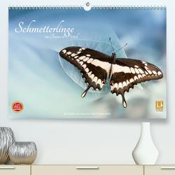 Schmetterlinge – ein Traum in Pastell (Premium, hochwertiger DIN A2 Wandkalender 2020, Kunstdruck in Hochglanz) von Dittmann,  Bettina