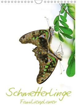 Schmetterlinge / Familienplaner (Wandkalender 2018 DIN A4 hoch) von Gann (magann),  Markus