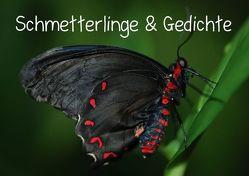 Schmetterlinge & Gedichte (Tischaufsteller DIN A5 quer) von Stanzer,  Elisabeth