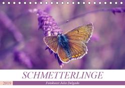 Schmetterlinge im Fokus (Tischkalender 2019 DIN A5 quer) von Delgado,  Julia