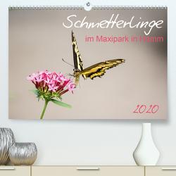 Schmetterlinge im Maxipark in Hamm (Premium, hochwertiger DIN A2 Wandkalender 2020, Kunstdruck in Hochglanz) von Gimpel,  Frauke