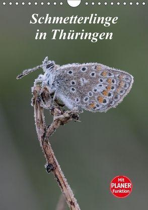 Schmetterlinge in Thüringen (Wandkalender 2018 DIN A4 hoch) von Sprenger,  Bernd