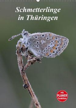 Schmetterlinge in Thüringen (Wandkalender 2019 DIN A2 hoch) von Sprenger,  Bernd