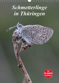 Schmetterlinge in Thüringen (Wandkalender 2019 DIN A3 hoch) von Sprenger,  Bernd