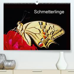 Schmetterlinge (Premium, hochwertiger DIN A2 Wandkalender 2020, Kunstdruck in Hochglanz) von / Bachmeier / Huwiler / Krause / Kreuter / Schreiter / Steinkamp,  McPHOTO