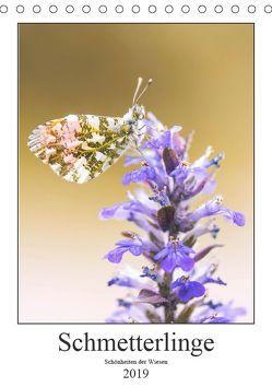 Schmetterlinge – Schönheiten der Wiesen (Tischkalender 2019 DIN A5 hoch) von Vomacka,  Andreas