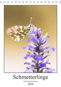 Schmetterlinge – Schönheiten der Wiesen (Tischkalender 2020 DIN A5 hoch) von Vomacka,  Andreas