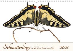 Schmetterlinge so leicht, so bunt, so schön (Wandkalender 2021 DIN A4 quer) von Ribi,  Alex
