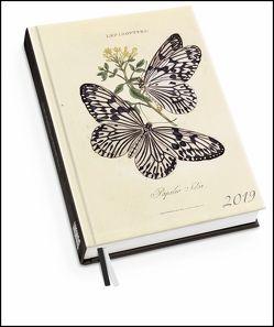 Schmetterlinge Taschenkalender 2019 – Terminplaner mit Wochenkalendarium – Format 11,3 x 16,3 cm von Donovan,  Edward, DUMONT Kalenderverlag