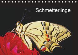 Schmetterlinge (Tischkalender 2019 DIN A5 quer) von / Bachmeier / Huwiler / Krause / Kreuter / Schreiter / Steinkamp,  McPHOTO