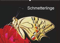 Schmetterlinge (Wandkalender 2019 DIN A2 quer) von / Bachmeier / Huwiler / Krause / Kreuter / Schreiter / Steinkamp,  McPHOTO