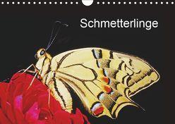 Schmetterlinge (Wandkalender 2019 DIN A4 quer) von / Bachmeier / Huwiler / Krause / Kreuter / Schreiter / Steinkamp,  McPHOTO