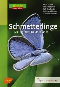 Schmetterlinge von Feldmann,  Reinart, Hermann,  Gabriel, Reinhardt,  Rolf, Settele,  Josef, Steiner,  Roland