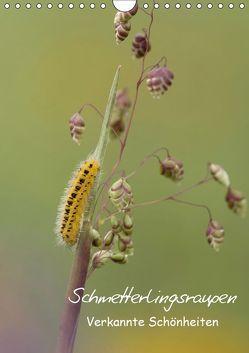 Schmetterlingsraupen – Verkannte Schönheiten (Wandkalender 2019 DIN A4 hoch) von Pelzer (Pelzer-Photography),  Claudia